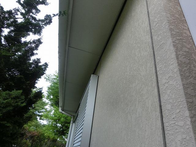 カビ・コケの発生外壁西側