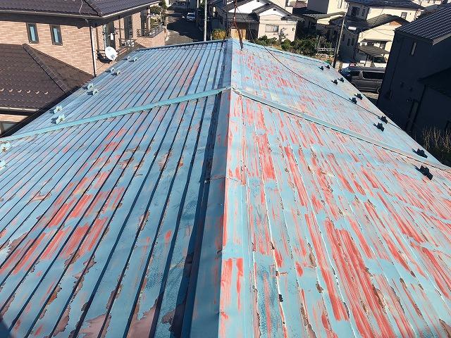 太白区にてトタン屋根塗装の現地調査を行いました